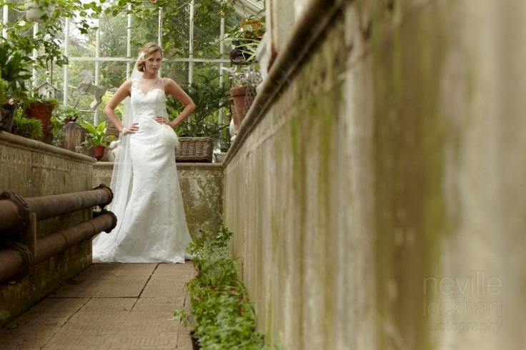 NLP Bridal 300113 226