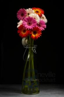 NLP Flowers 260113 262