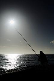 NLP Kalk Bay 131213 065